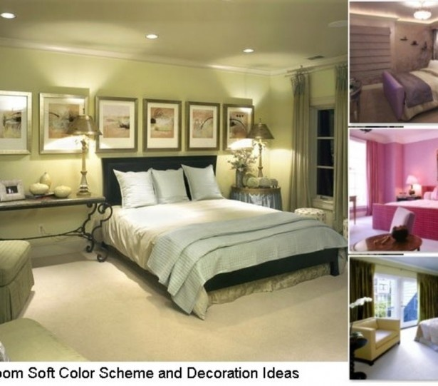 38 Best Paint Color Schemes Celery Green Images On: Paint Color: Celery Green