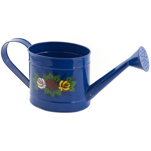 129 best Watering Cans images on Pinterest Watering cans Apples