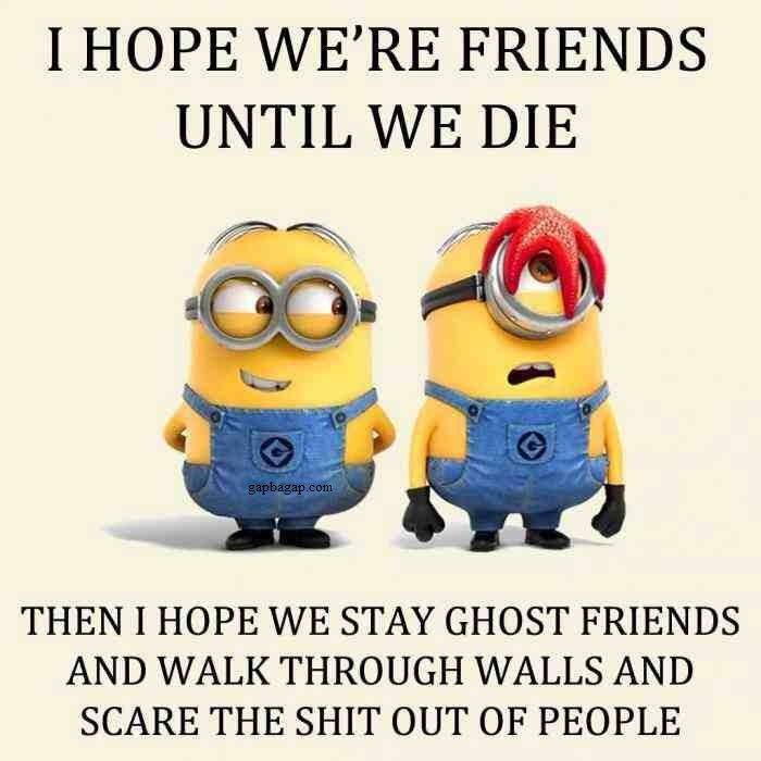 Funny Minion Memes About Friends