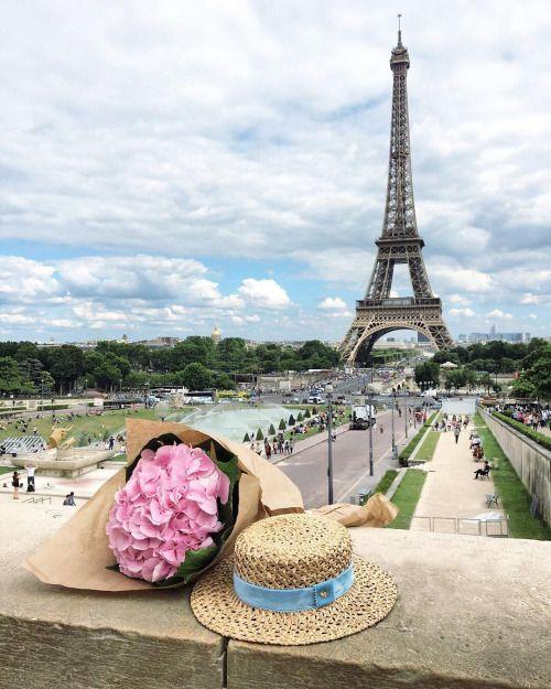 Peonies in Paris