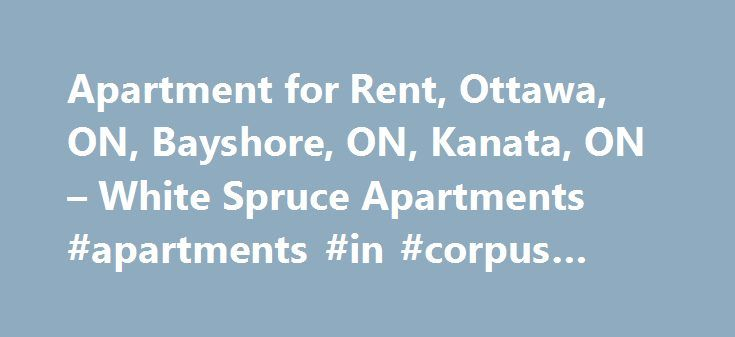 Apartment for Rent, Ottawa, ON, Bayshore, ON, Kanata, ON – White Spruce Apartments #apartments #in #corpus #christi http://apartment.remmont.com/apartment-for-rent-ottawa-on-bayshore-on-kanata-on-white-spruce-apartments-apartments-in-corpus-christi/  #apartments for rent in ottawa # Apartment for rent Ottawa Give Yourself A Life Of Comfort Here at White Spruce Apartments. we aim to make sure that our tenants enjoy maximum comfort and security and that they are fully satisfied during their…