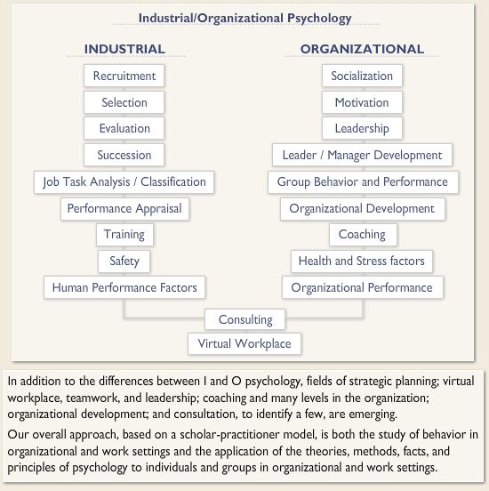 18 best  I O Psychology  images on Pinterest Business - I O Psychologist Sample Resume