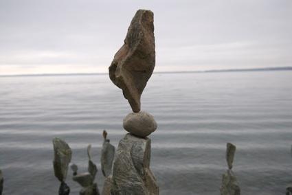 Bellingham, WA Artist Shane Hart.  Reminds me of Andy Goldworthy: Sculpture, Landart