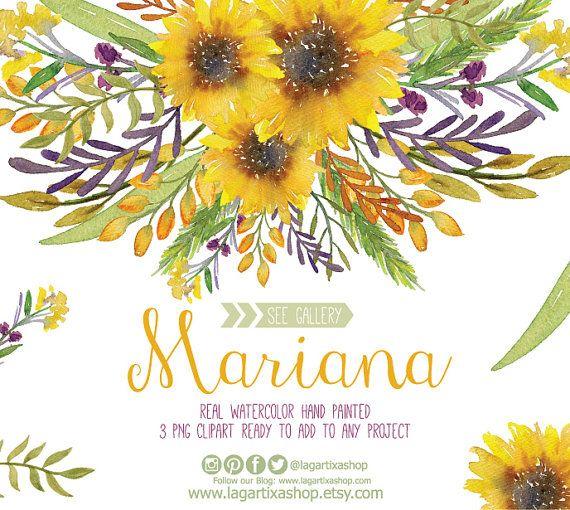 Watercolor Sunflower Clipart Floral Frame PNG Wedding Bouquet Arrangement Digital Paper