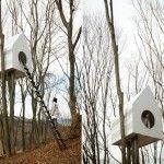 Ongewoon wonen: gigantisch nestkastje als design huis