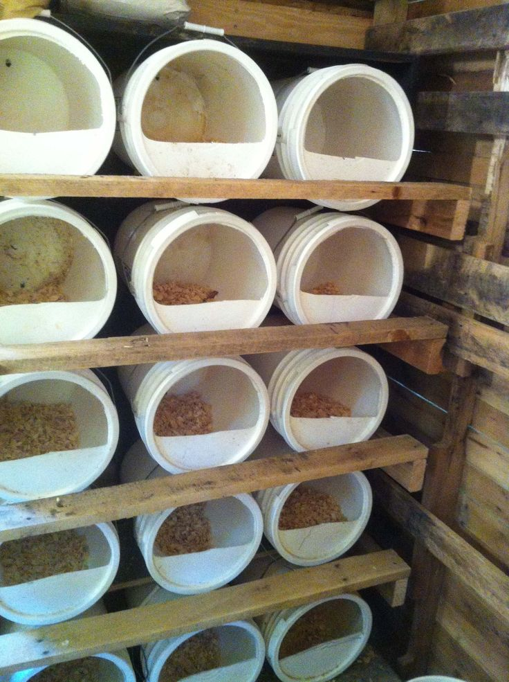 Bucket Chicken Nest Boxes