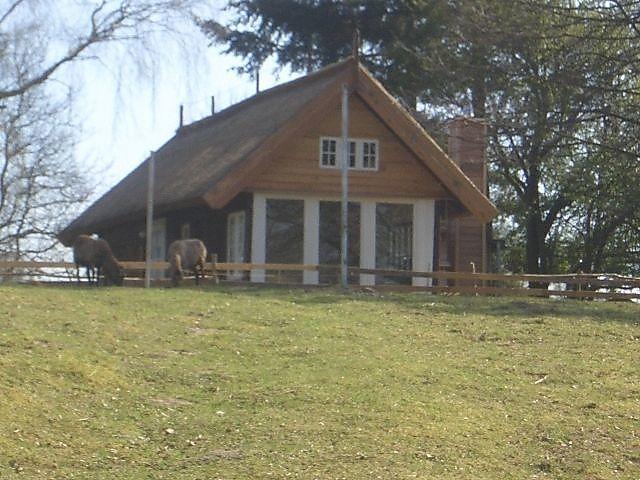 Dornbuschhaus Am Inselsee Ferienhaus In Muhl Rosin Fur 4 Personen 2 Schlafzimmer Hund Erlaubt Bei Tourist Online Buchen Ferienhaus Ferien Ferienhaus Am See