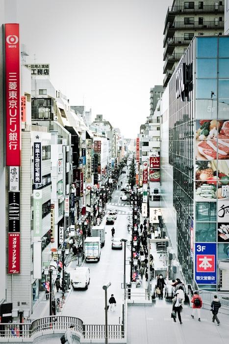 Tokyo white. (黒ネコ)