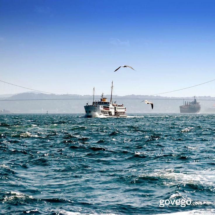 Günaydın!! Şarkılara, şiirlere konu olan İstanbul'dan herkese mutlu bir gün dileriz. :)  -------------------------------- govego.com/istanbul-otobus-bileti   #doğa #naturel #yeşil #green #life #lifeisgood #seyahatetmek #seyahat #yolculuk #gezi #view #manzara #gününkaresi #huzur #an  #anatolia #turkey #travel #turizm #türkiye #turkey #instagram #instagood #instaphoto #bestoftheday #photo #huzur  #govego #smile #travel