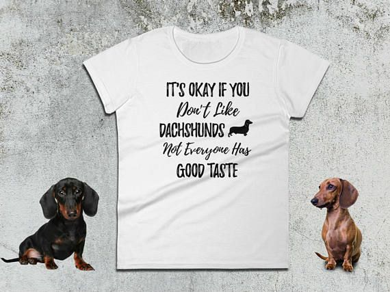 It's Okay If You Don't Like Dachshunds Not Everyone