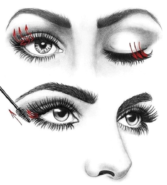 How to Apply Mascara like a Pro | Makeup Mania