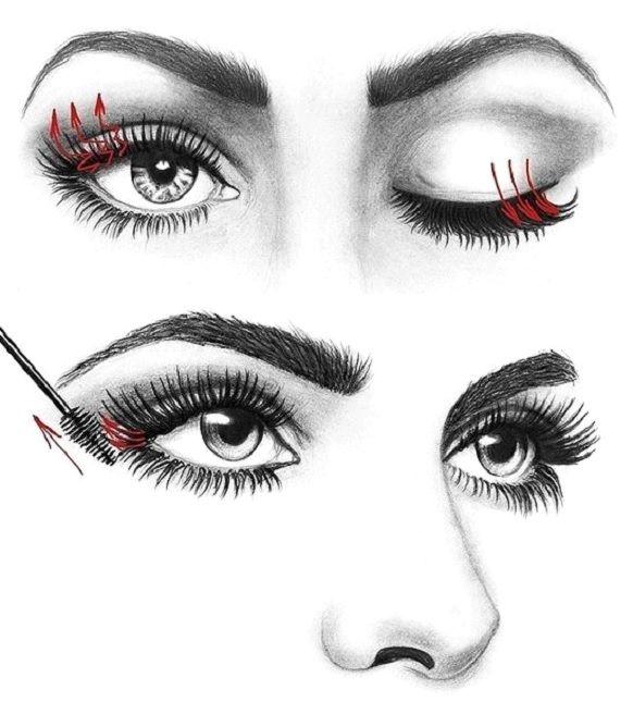 How to Apply Mascara like a Pro | Makeup Mania