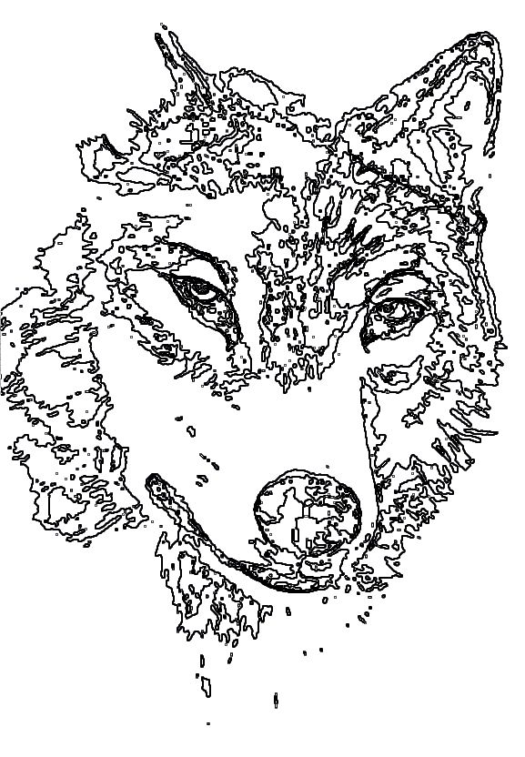 animal coloring pages wolf coloring pages for adults pinterest wolves http www. Black Bedroom Furniture Sets. Home Design Ideas