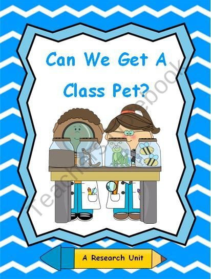 43 best images about School: class pet? on Pinterest | In the ...