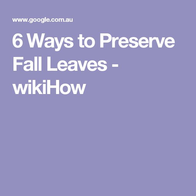 6 Ways to Preserve Fall Leaves - wikiHow