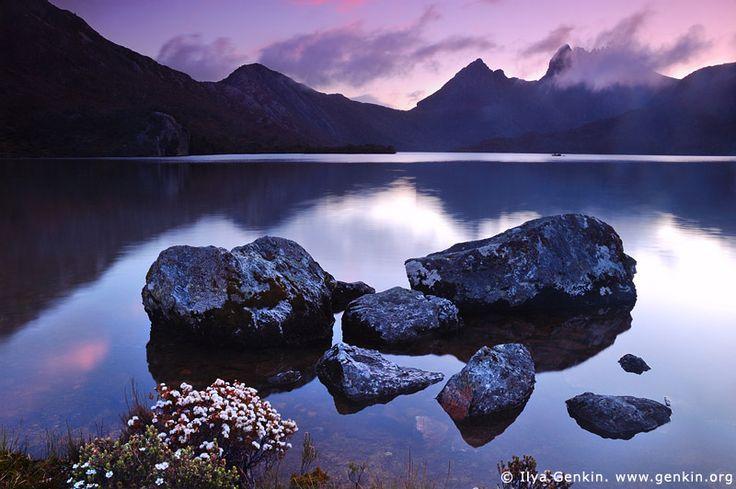 Lake Dove after Sunset, Cradle Mountain National Park, Tasmania, Australia.