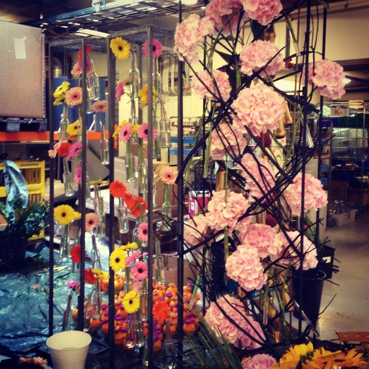 Dekorasjoner hortensia