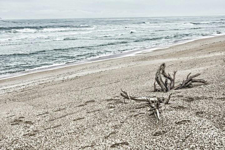 Jackson ville beach