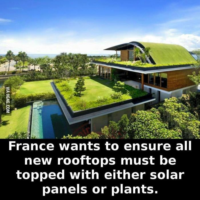Way to go France - 9GAG