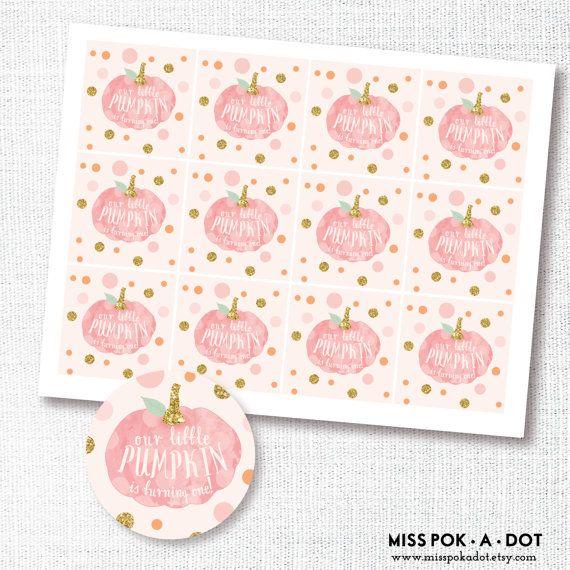 our little pumpkin is ONE pink pumpkin first by misspokadot