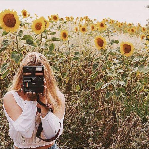 Everything under the sun(flower) #lovepolaroid by @dominikapodbilska Cameras film and more at @polaroidoriginals via Polaroid on Instagram - #photographer #photography #photo #instapic #instagram #photofreak #photolover #nikon #canon #leica #hasselblad #polaroid #shutterbug #camera #dslr #visualarts #inspiration #artistic #creative #creativity