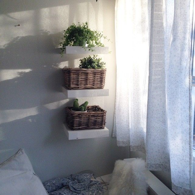 my morning corner