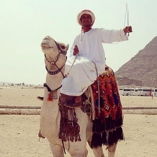 A bedouin on camel. Cairo, Egypt | Flickr – Condivisione di foto!