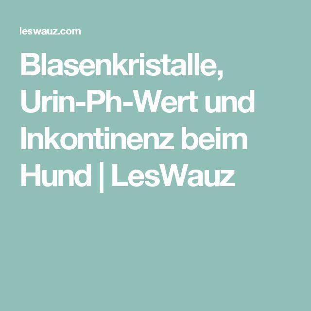 Blasenkristalle, Urin-Ph-Wert und Inkontinenz beim Hund   LesWauz