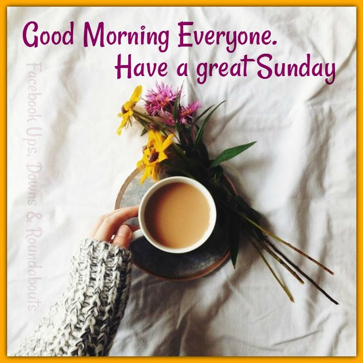 Good Morning Everyone Status : Good morning everyone have a great sunday https