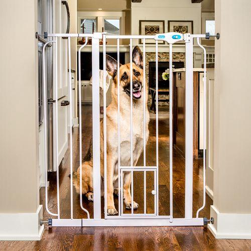 Best 25 Extra Tall Pet Gate Ideas On Pinterest