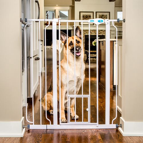"Carlson 39"" Extra Tall Pet Gate with Slide Handle- For big dogs"