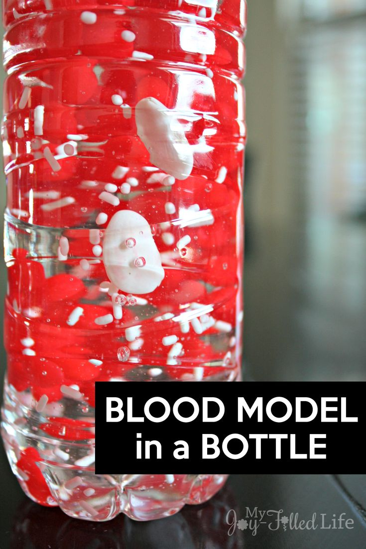 Make a blood model in a bottle to help kids learn about the components of blood.