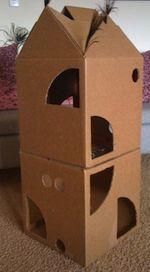 Fabriquer un arbre à chat: Cabane à chat fabriquée avec deux cartons