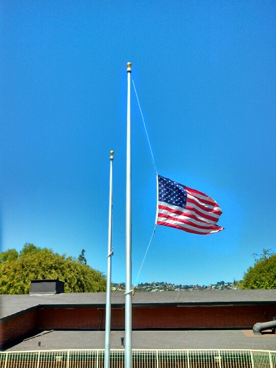 flag at half staff on veterans day