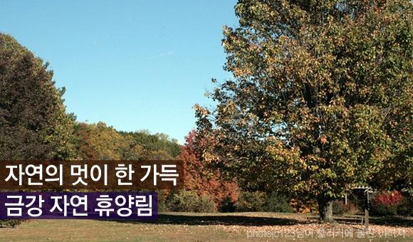 가족여행 수목원 추천! 자연의 멋이 한 가득 금강 자연 휴양림(금강 수목원)  http://www.insightofgscaltex.com/?p=13438