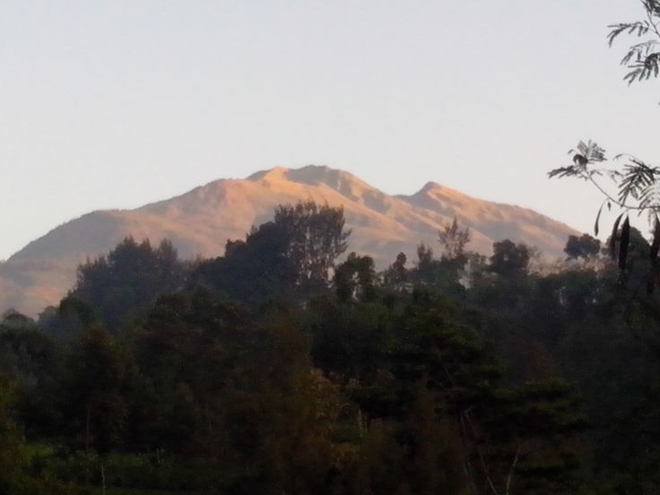 It's Mount Merbabu in the morning (5:57AM), looked smaller as I moved to another house for staying there. I tooked this picture at the small road in Suroteleng village which connected Selo.