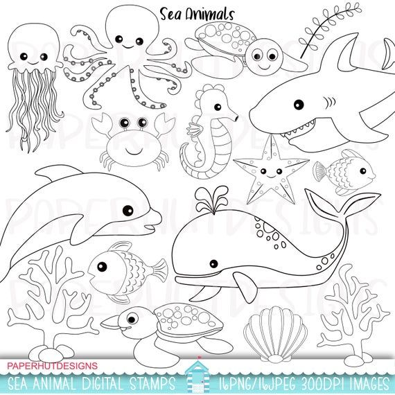Sea Animals Digital Stampsunder The Sea Digital Stampssea Etsy In 2021 Animal Clipart Under The Sea Drawings Digital Stamps