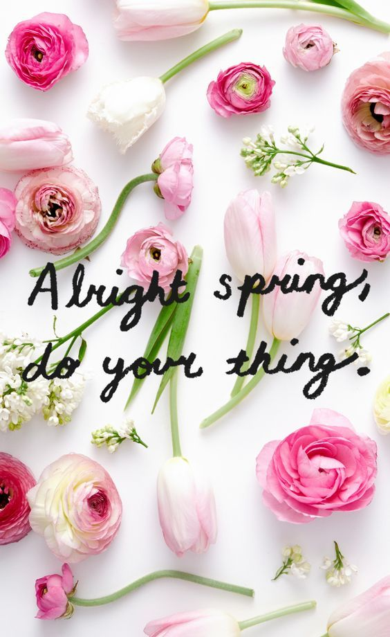 Alright spring, do your thing...