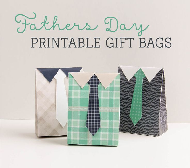 Free Fathers Day Printable Gift Bags ~ Tinyme