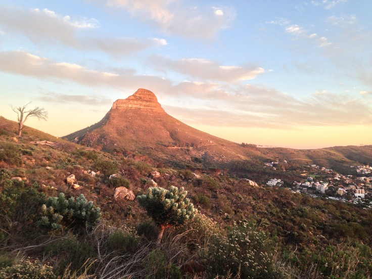 The early morning sunrise lights up Lions Head