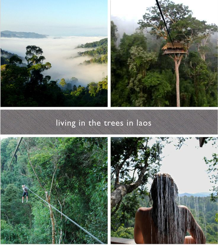 Vietnam Treehouse Part - 21: The Gibbon Experience Treehouse, Bokeo Reserve, Laos. Idk Where This Is  Exactly. But I Know You Have To Zip Line To Even Get To Your Treehouse.