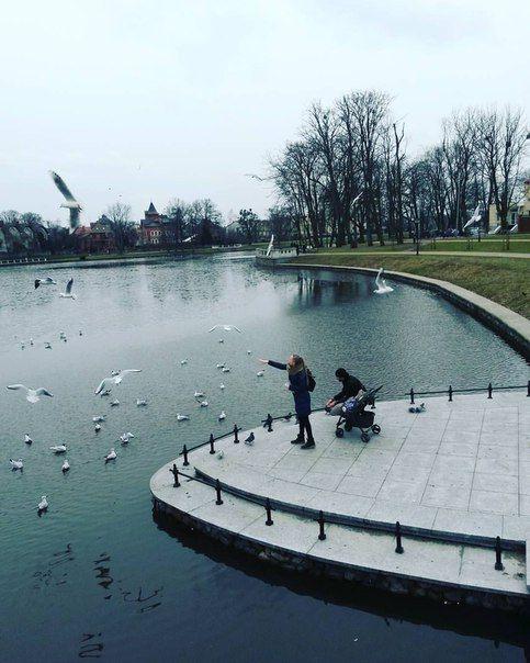 ТК | ОДНОФОТО | Калининград. Верхнее озеро. Красота рядом!