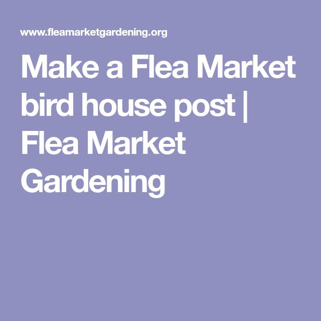 Make a Flea Market bird house post | Flea Market Gardening