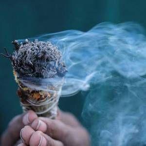 Sauge : La pratique de la purification remonte aux temps préhistoriques, et on l'utilise encore aujourd'hui dans le monde entier pour tout nettoyer, des