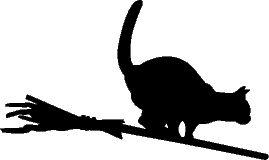 Cat on broom