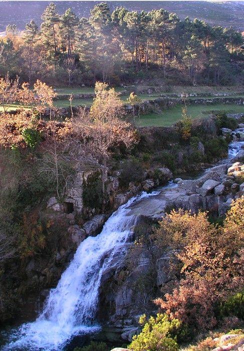 Autumn photo taken in the Alvão Natural Park. Vila Real, Portugal