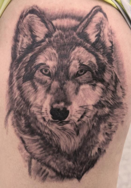 20 Pist Off Wolf Tattoos For Men Ideas And Designs