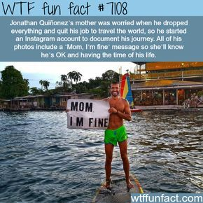 WTF Facts : funny, interesting & weird facts – Sarp Yavuz