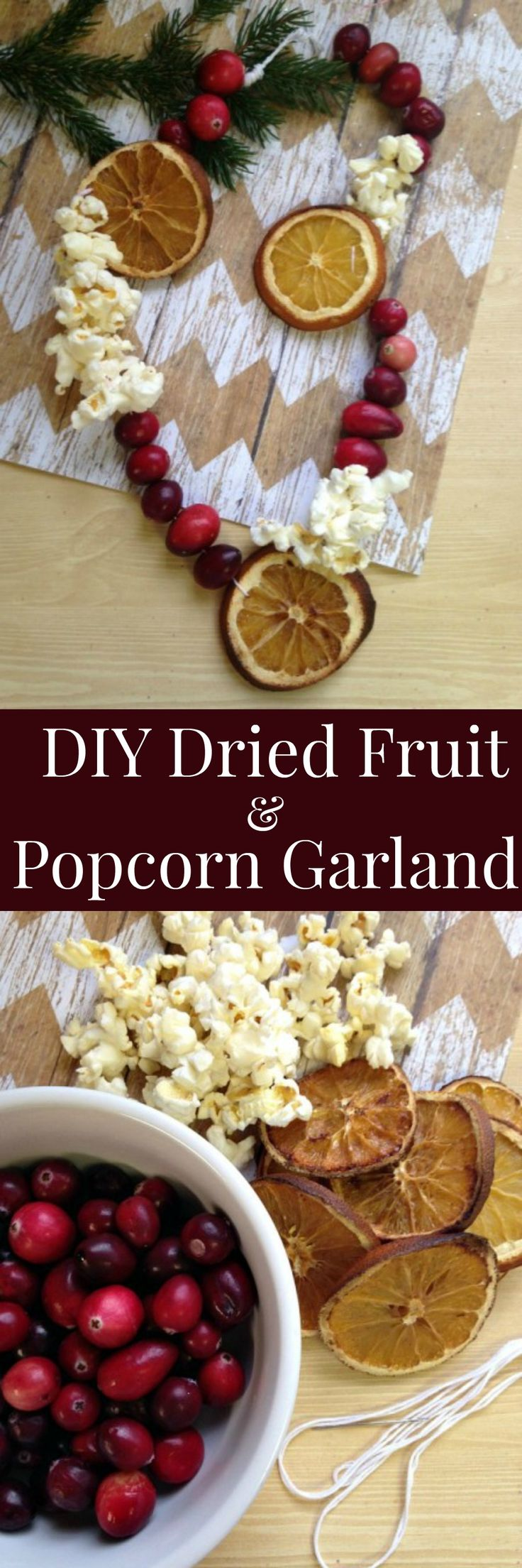 DIY Dried Fruit and Popcorn Garland - Making your own dried fruit & popcorn garland is a fun and frugal way to decorate your home and tree for the holidays.