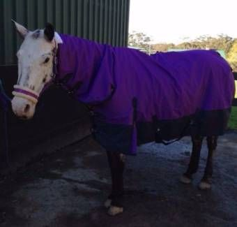 Rainsheet Rugs And Combo Combos Super Tough Outer Cotton Lining To Reduce Overheating Satin In Mane Shoulders